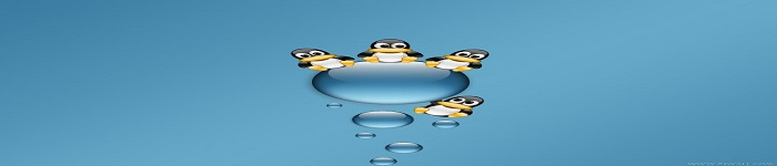 linux系统指令概要