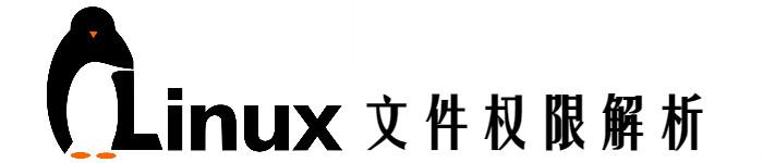 linux 文件权限解析