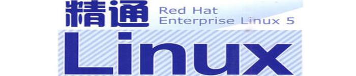《精通Linux网络服务器配置·管理·检测·应用》pdf电子书免费下载