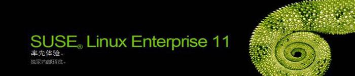 SUSE发布全新版本,多模块设计为IT转型赋能