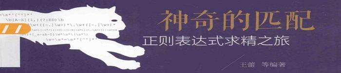 《神奇的匹配+正则表达式求精之旅(王蕾)》pdf电子书免费下载