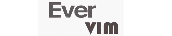 EverVim一款适合所有开发者的 Vim 发行版