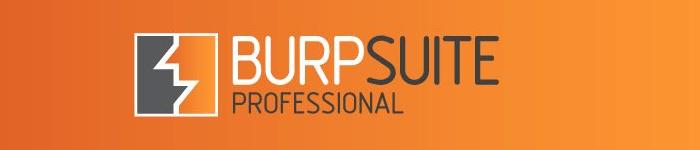 《BurpSuite 实战指南》pdf电子书免费下载