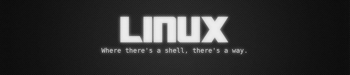 Linux top 命令快速入门