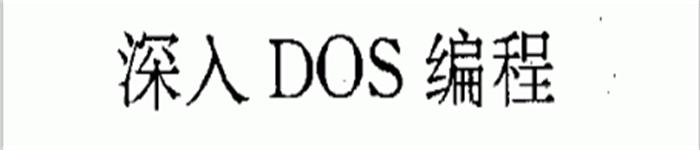 《深入dos编程》    pdf电子书免费下载