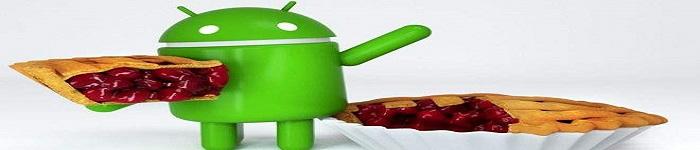 谷歌宣布秋季推送轻量级的 Android 9 Pie