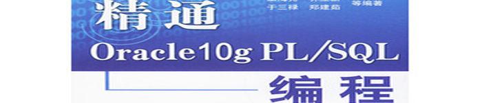 《精通Oracle10编程》pdf电子书免费下载