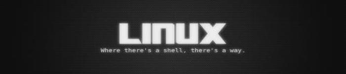 Linus 对 CoC 风波做出回应