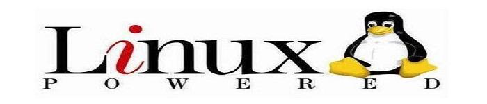 Linux和BSD发行版被曝新的特权升级缺陷漏洞