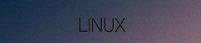 极小Linux系统有何妙用
