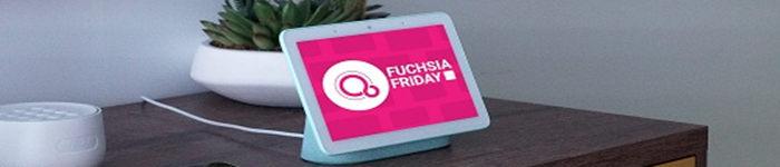 搭载 Fuchsia OS 设备出现在 Google 发布会上