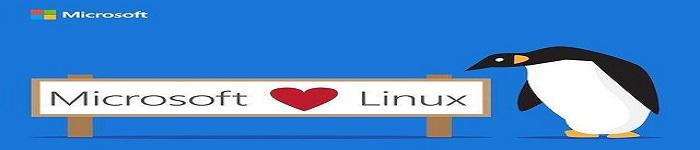 Linux现在已主导Azure