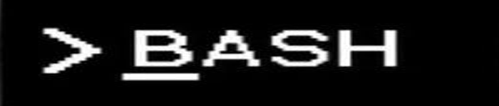 教你一些Linux中隐藏bash历史命令的小技巧