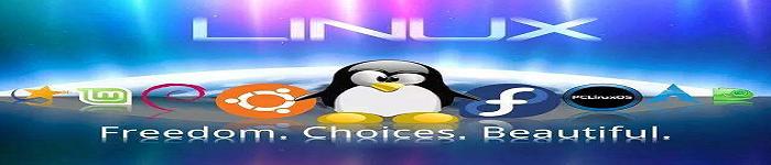 最受欢迎 Linux 发行版,来看看都有谁?