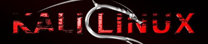 学习Kali Linux必须知道的几点