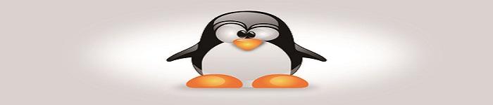 DNS劫持损坏Linux.org那些事