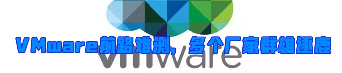 VMware前路难测,多个厂家群雄逐鹿