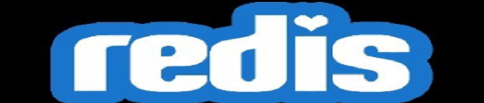 自定义安装Redis