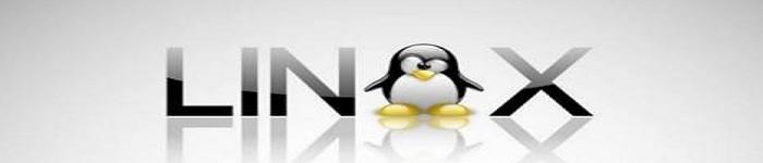 教你获取 Linux 中的目录大小的方法