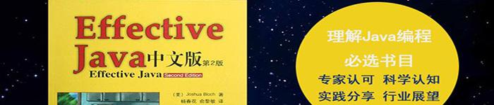 《Effective Java (第二版 中文版)》pdf电子书免费下载