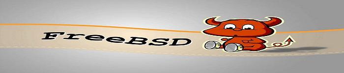 FreeBSD常用操作