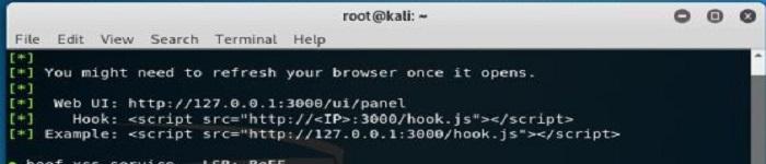 Kali Linux 2019.1 更新发布