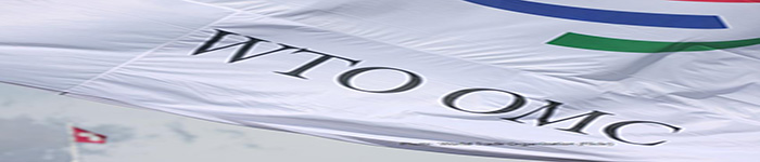 中美等76个WTO成员商讨国际电商规则