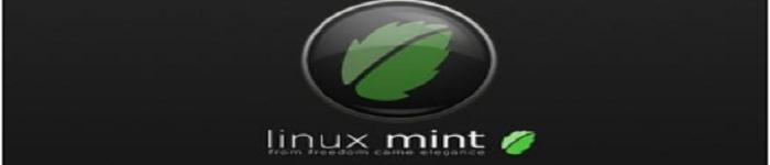 Win10系统如何安装Linux Mint