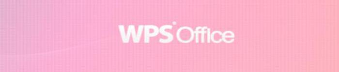 大力发展政企办公市场,金山办公推出专业版WPS for Linux