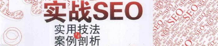 《实战SEO-实用技法与案例剖析》pdf电子书免费下载