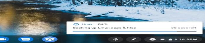 Chromebook 开发者版变得更加实用