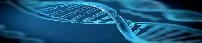 DNA可被黑客窃听利用