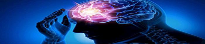 癫痫脑电分析引擎