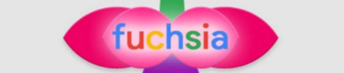 "Google ""金屋藏娇""的 Fuchsia OS 到底是什么?"