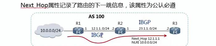 学习网络BGP必备基础知识
