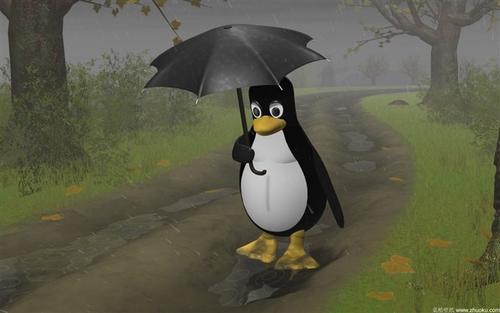 教你玩转Linux—磁盘格式化
