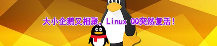 大小企鹅又相聚,Linux QQ突然复活!