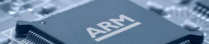 ARM,自定义指令集功能?