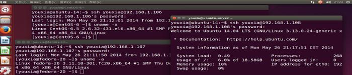 Linux学习教程-获取可用命令行参数 or 文件上下翻转和左右翻转