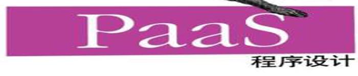 《PAAS程序设计》pdf电子书免费下载