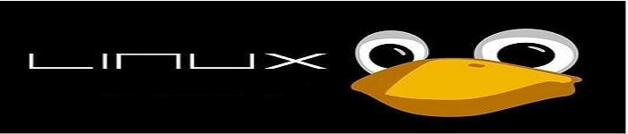 Linux编写Bash脚本的10个技巧