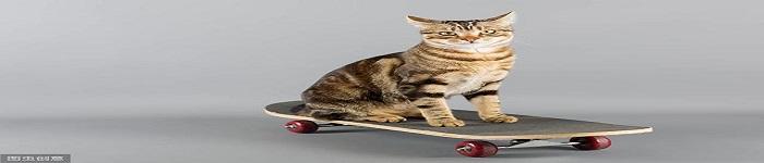 Tomcat与Servlet容器