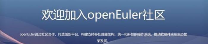 openEuler 开源社区如约而至,上千个代码仓库已开放!
