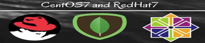 更改 RHEL7 或者 CentOS 7 的网卡名称