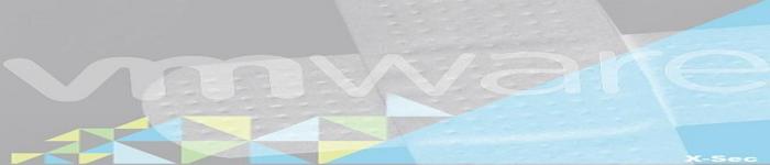 VMware vmdir 组件被曝信息泄露漏洞