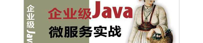 《企业级Java微服务实战》pdf电子书免费下载