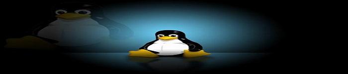 Linux零拷贝技术浅析