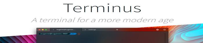 Deepin Linux如何安装Terminus终端