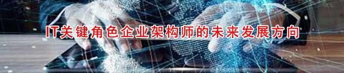 IT关键角色企业架构师的未来发展方向