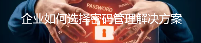 企业如何选择密码管理解决方案?